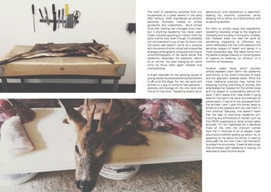 Preservation, Wildland Mag Issue #03